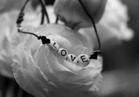 legamenti d'amore garantiti